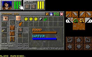 dungeon master online